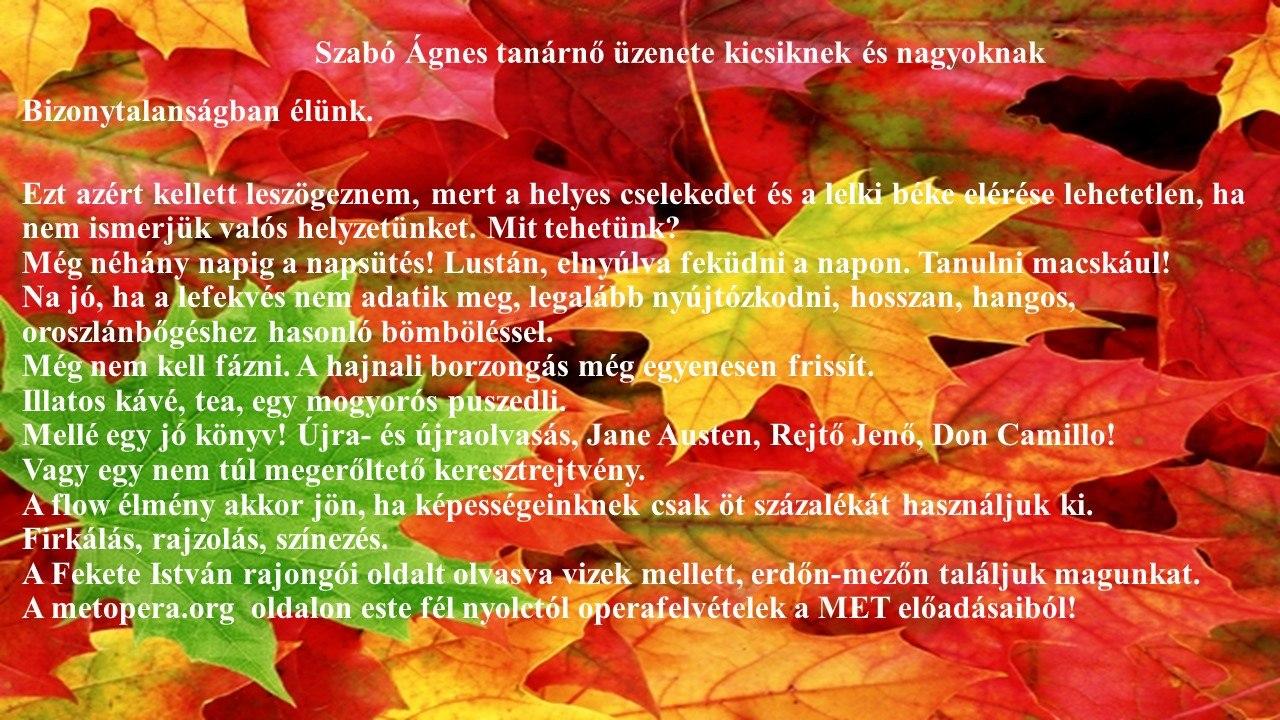Szabó Ágnes tanárnő üzenete