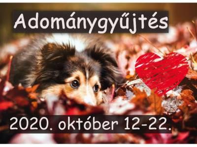 Állatok világnapja - adománygyűjtés